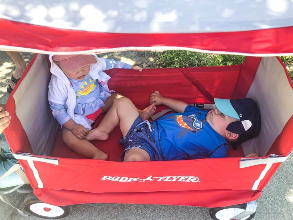 Babies asleep in the Radio Flyer