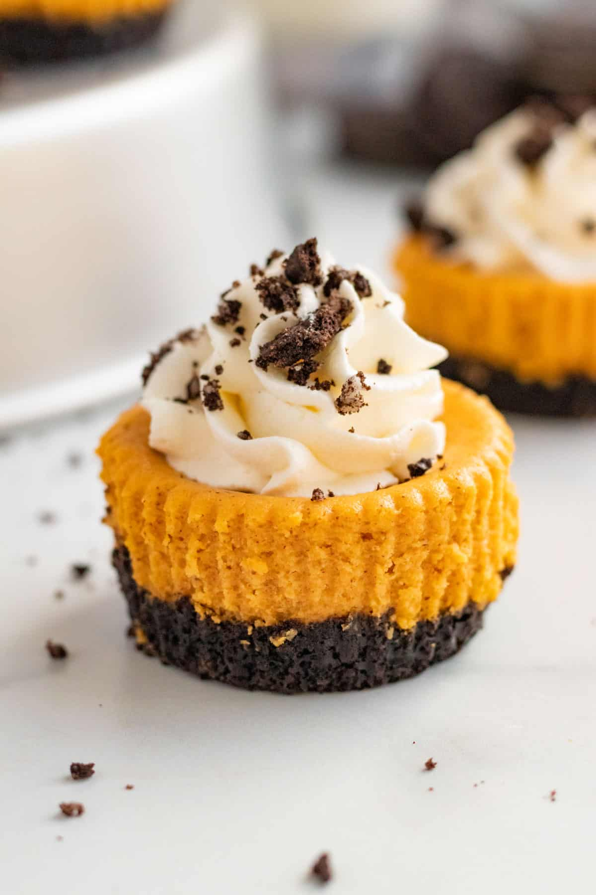 a mini pumpkin cheesecake with whipped cream and cookie crumbs